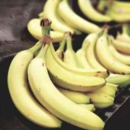 Papa's Alabama Banana Puddin'